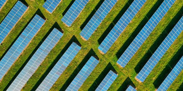 compañia luz, energía verde, energía renovable